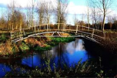 Dick Nunn's Bridge